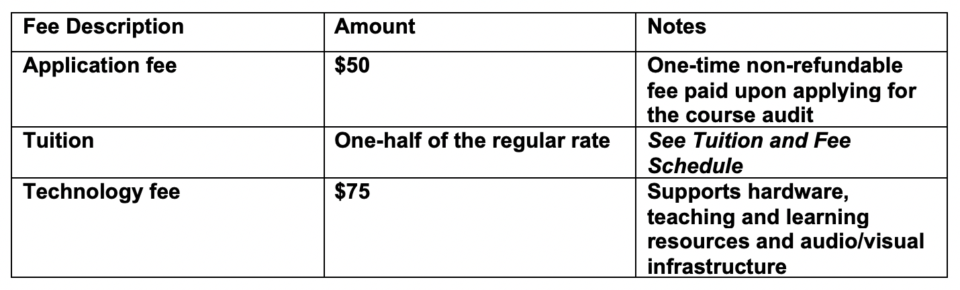 auditing fees