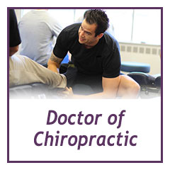 doctor of chiropractic - student resource center